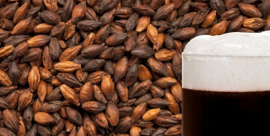 chocolate brewing malt schokolade braumalz