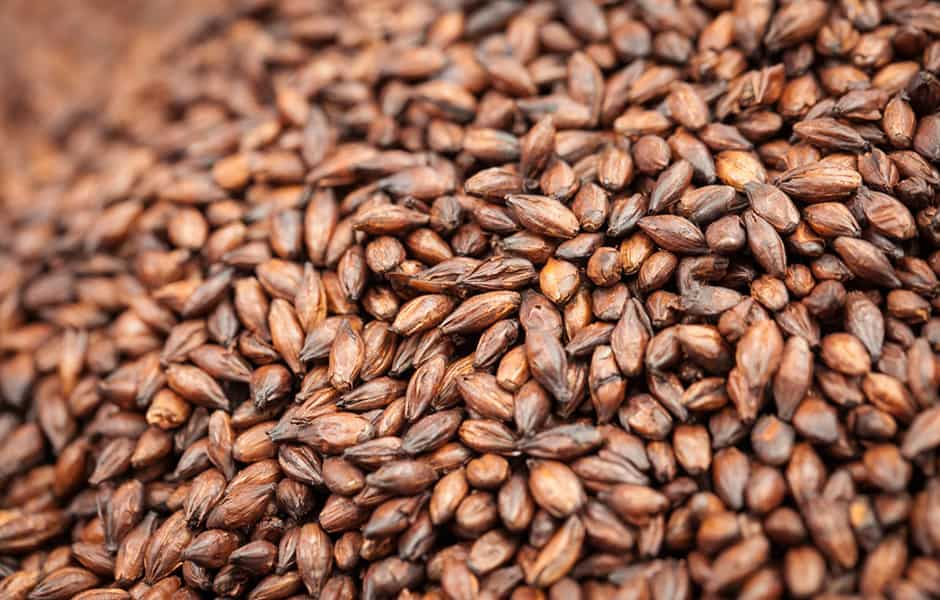 BEST Roasted Malt