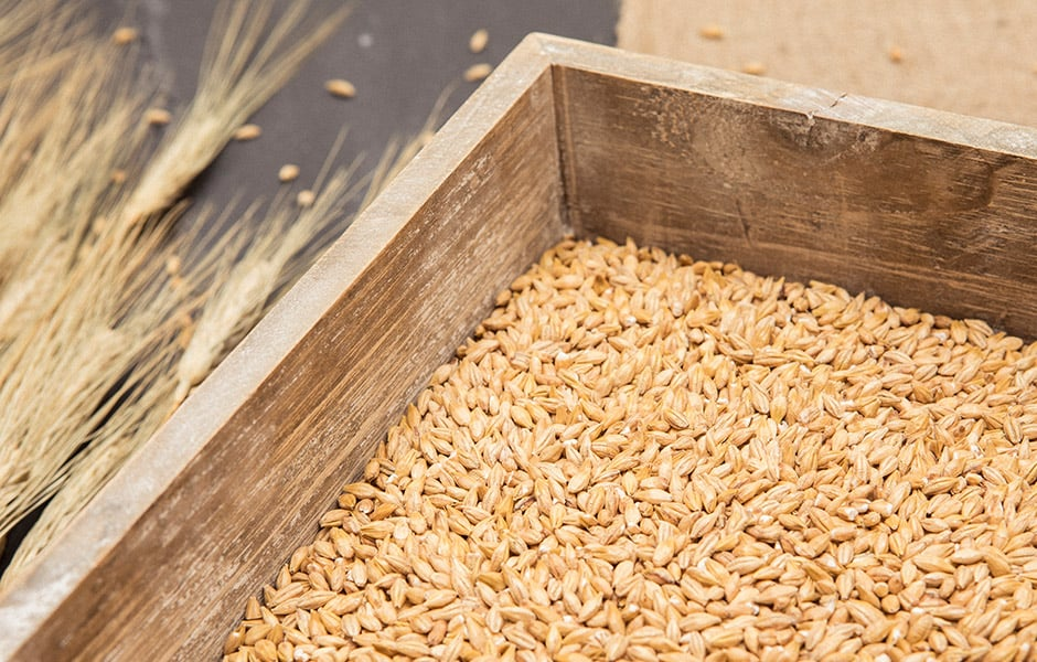 BEST Functional malts and cereals
